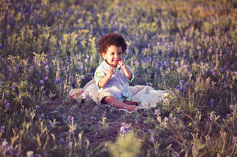 Springtime bluebonnets baby boy