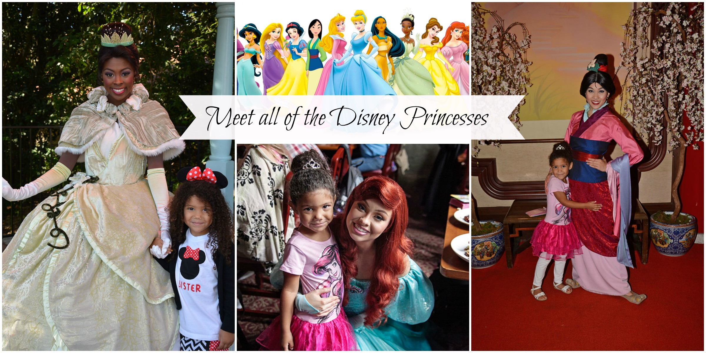 Tips For Meeting All Of The Disney Princesses At Disney World