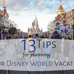 Disney World Vacation Tips
