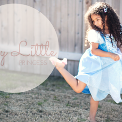 Biracial Disney Princess Cinderella