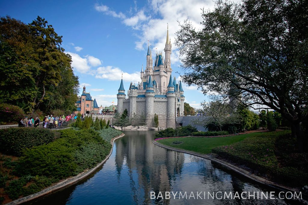 best disney world castle photos