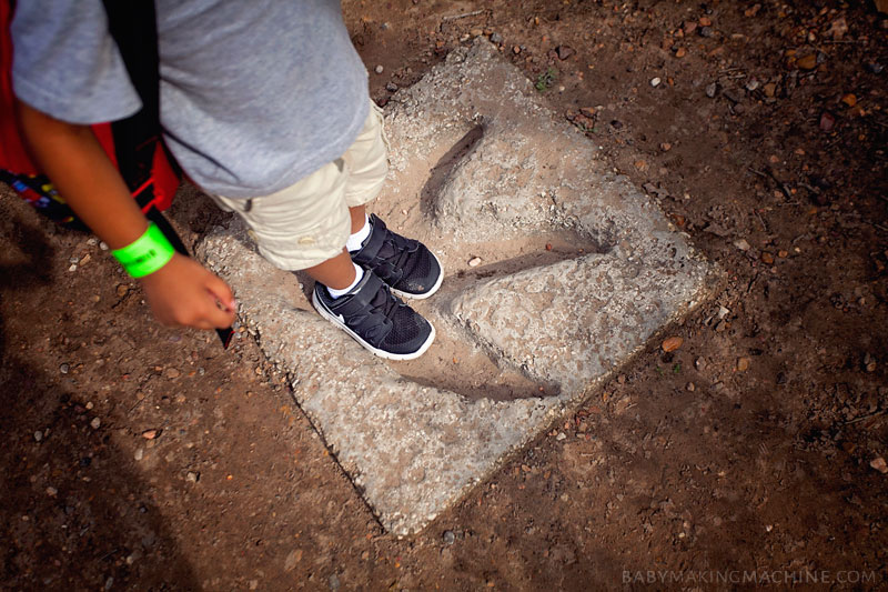 A lesson in raising a son and learning to love what he loves. Our trip to Dinosaur Park Texas