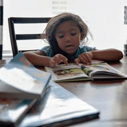 Deciding home school