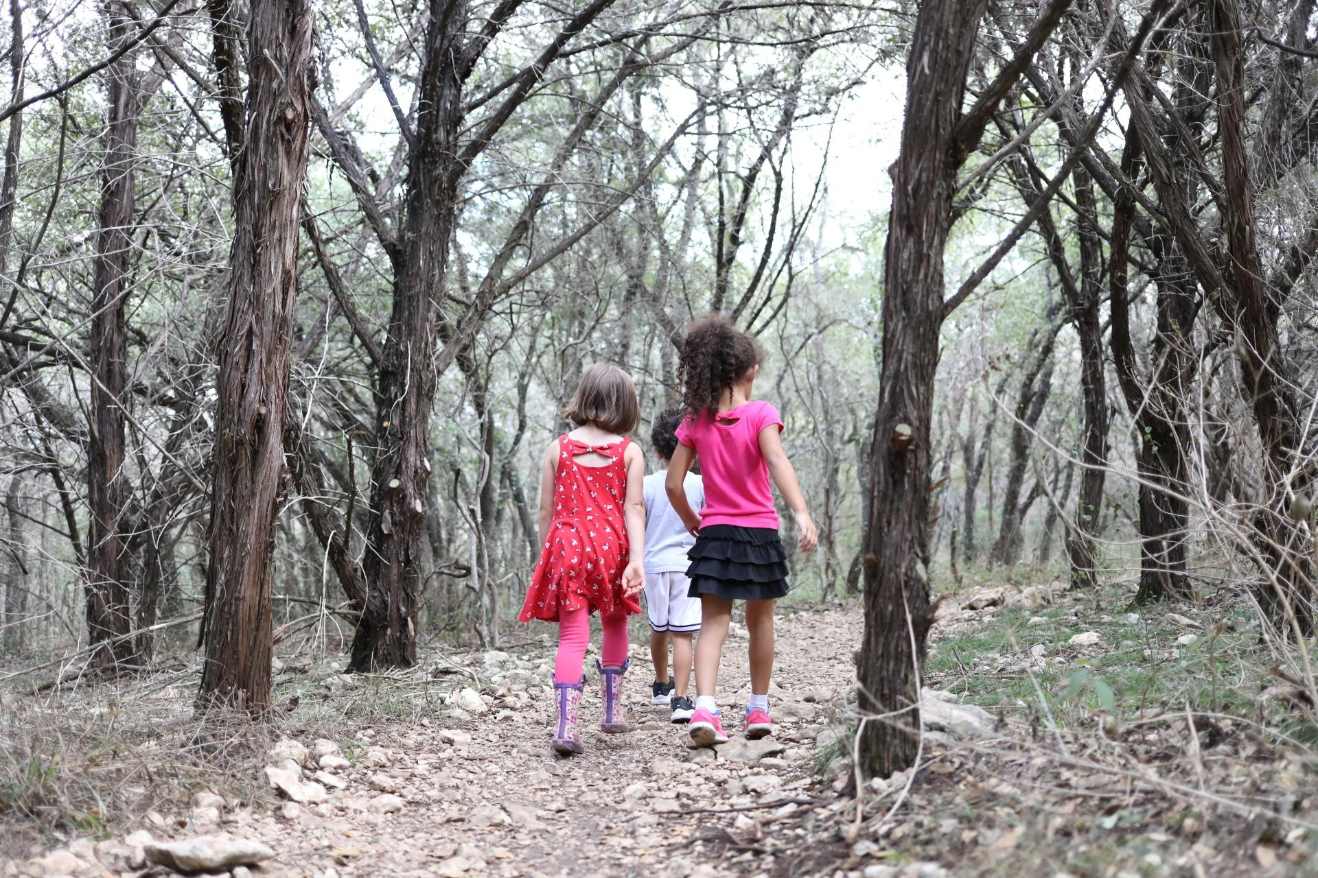 wild explorers hike_0019