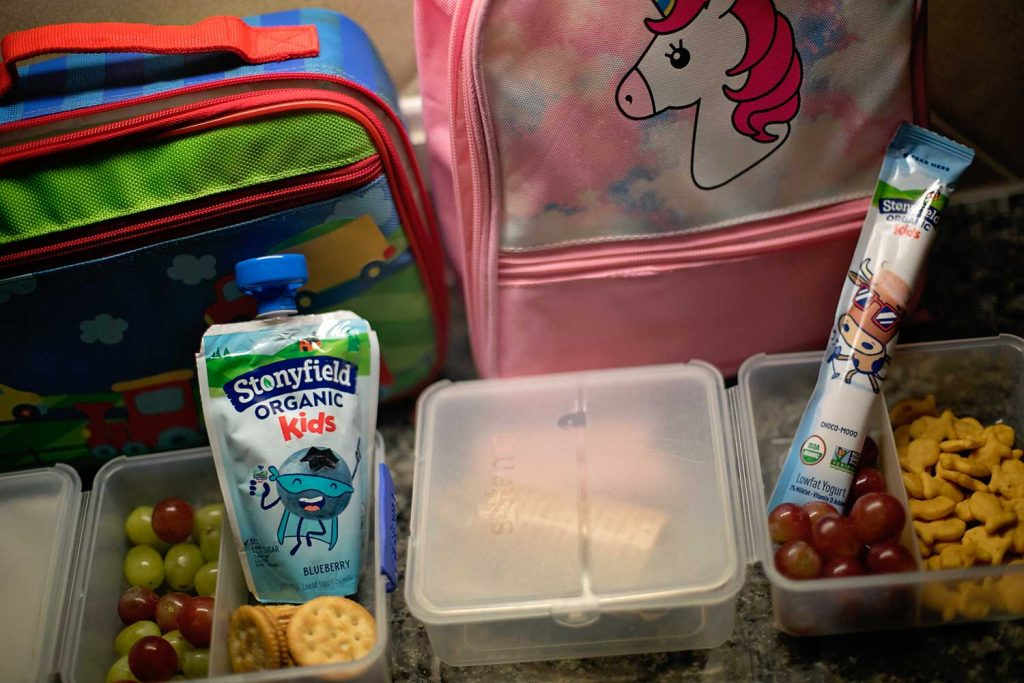 Easy healthy lunch snacks for kids