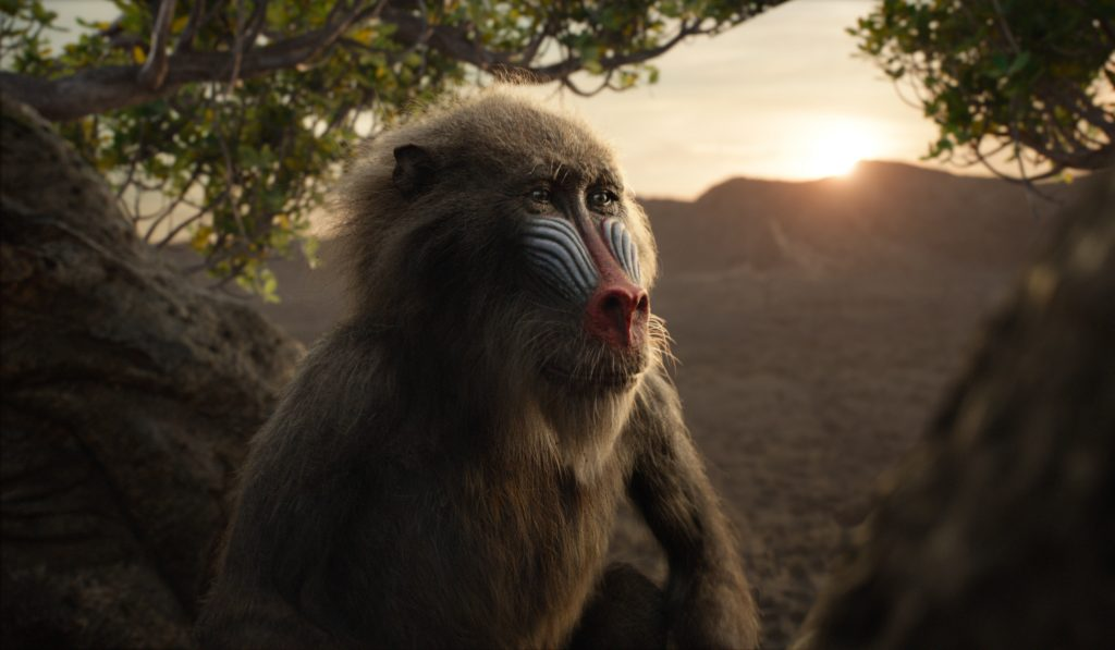 Rafiki in the lion king 2019