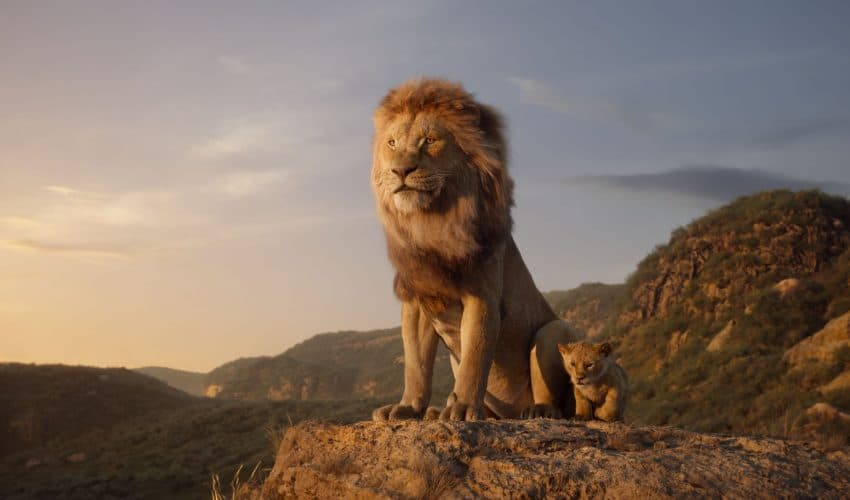 Simba and Mufasa in the live action lion king having a father son chat.