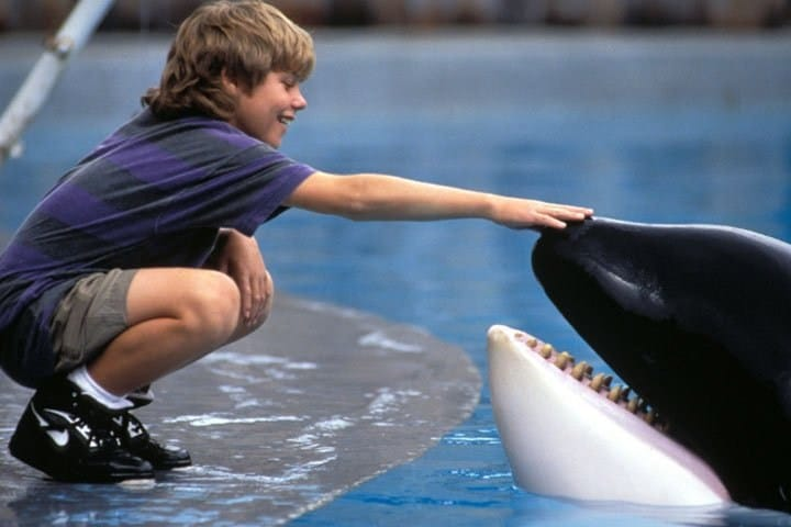Free Willy - Ultimate 90s movie checklist