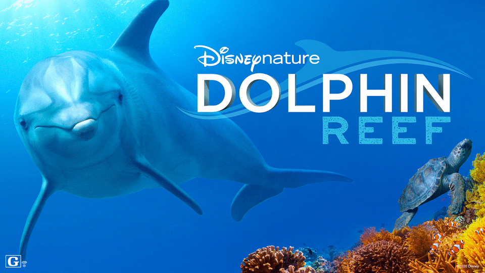 Dolphin Reef Youtube Trailer - Educational Shows for Kids